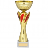 Gold And Red Cup Trophy 10 inches 25.5cm : New 2020