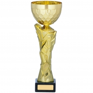 Gold Cup Trophy 11 inches 28cm : New 2020