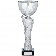 Silver Cup Trophy 12.5 inches 32cm : New 2020