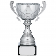 Silver Cup Trophy With Handles 7.5 inches 19cm : New 2020