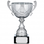 Silver Cup Trophy With Handles 9 inches 23cm : New 2020