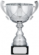 Silver Cup Trophy With Handles 12 inches 30.5cm : New 2020