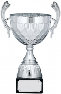 Silver Cup Trophy With Handles 10.5 inches 26.5cm : New 2020