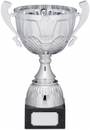 Silver Cup Trophy With Handles 23.5cm : New 2019