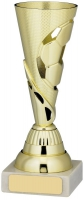 Football Trophy Award