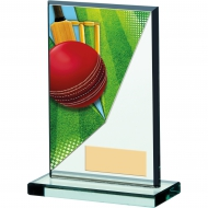 Cricket Acrylic Trophy 5.25 inches 13cm : New 2020