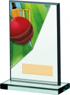Cricket Acrylic Trophy 6 inches 15cm : New 2020