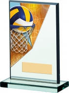Netball Acrylic Plaque 6 inches 16cm : New 2020