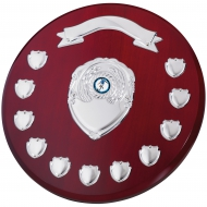 Rosewood Round 11 Year Presentation Shield 30.5cm : New 2019