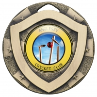 Mini Shield Medal Trophy Award