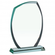 Plaque 10.5 inches Trophy Corporate Award