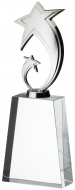 Silver Star On Clear Base Trophy Award