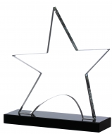 Clear star on black base 7.25 inches Trophy Award