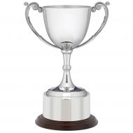 Nickel plated die-cast cup 8 inches Trophy Award