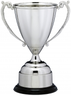 Nickel Plated Cup Trophy Award