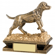Gundog Trophy Award
