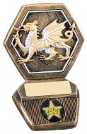 Welsh National Trophy Award
