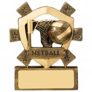 Netball Mini Shield Trophy Award