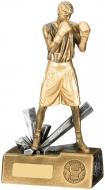Boxer Male Trophy Award