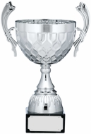 Silver Cup Trophy With Handles 13.75 inches 35cm : New 2020