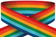 Rainbow 22mm Wide Ribbon 22mm : New 2020