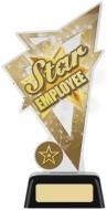 Star Employee Acrylic Award 6.25 inches 16cm : New 2020